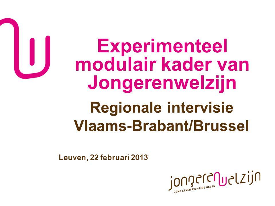 Experimenteel modulair kader van Jongerenwelzijn Regionale intervisie Vlaams-Brabant/Brussel Leuven, 22 februari 2013