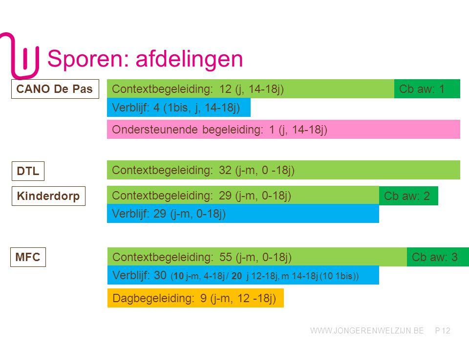 WWW.JONGERENWELZIJN.BE P Sporen: afdelingen 12 Contextbegeleiding: 12 (j, 14-18j) CANO De Pas Contextbegeleiding: 32 (j-m, 0 -18j) DTL Cb aw: 2 Kinder
