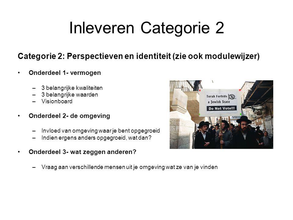 Inleveren Categorie 2 Categorie 2: Perspectieven en identiteit (zie ook modulewijzer) Onderdeel 1- vermogen –3 belangrijke kwaliteiten –3 belangrijke