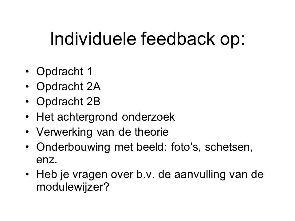 Individuele feedback op: Opdracht 1 Opdracht 2A Opdracht 2B Het achtergrond onderzoek Verwerking van de theorie Onderbouwing met beeld: foto's, schetsen, enz.