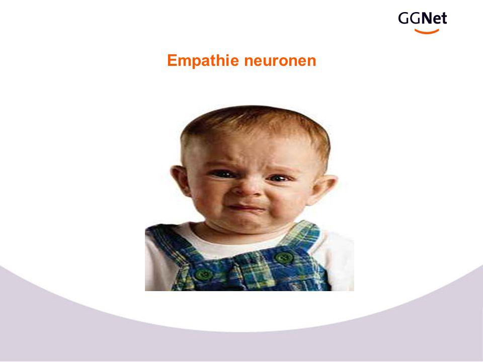 Empathie neuronen