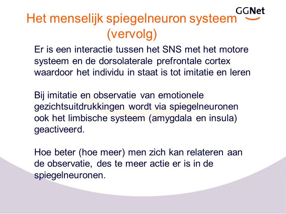 Het menselijk spiegelneuron systeem (vervolg) Er is een interactie tussen het SNS met het motore systeem en de dorsolaterale prefrontale cortex waardo
