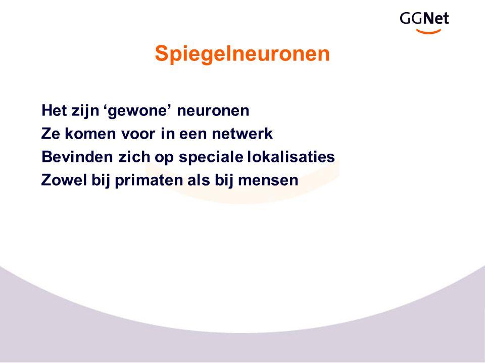 Fronto-parietaal spiegel-neuronen systeem voor (anterior) achter (posterior) boven (superior)
