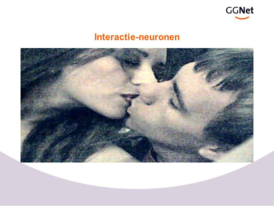 Het menselijk imitatie circuit voor (anterior) achter (posterior) boven (superior) STS: visuele associatiecortex parietal comp.