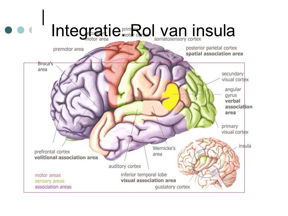 Integratie. Rol van insula