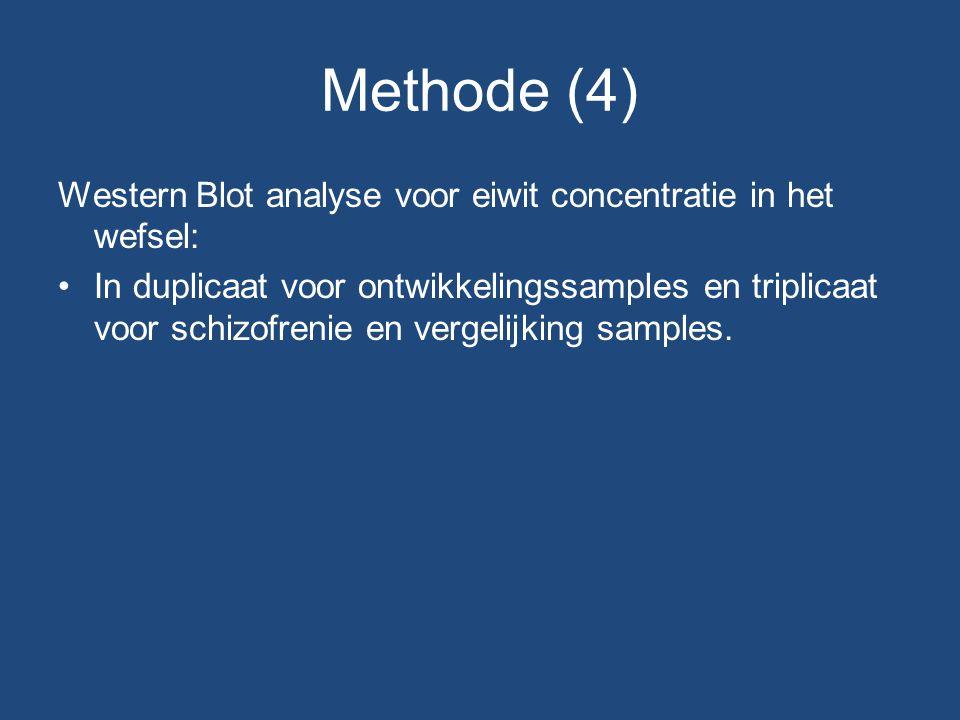 Methode (4) Western Blot analyse voor eiwit concentratie in het wefsel: In duplicaat voor ontwikkelingssamples en triplicaat voor schizofrenie en vergelijking samples.