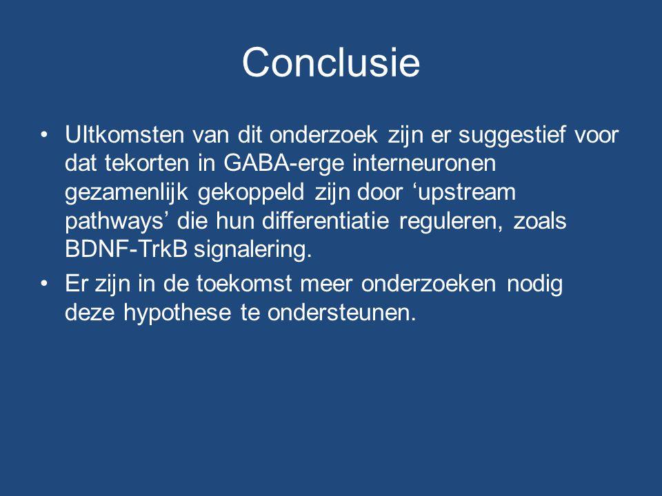 Conclusie UItkomsten van dit onderzoek zijn er suggestief voor dat tekorten in GABA-erge interneuronen gezamenlijk gekoppeld zijn door 'upstream pathways' die hun differentiatie reguleren, zoals BDNF-TrkB signalering.