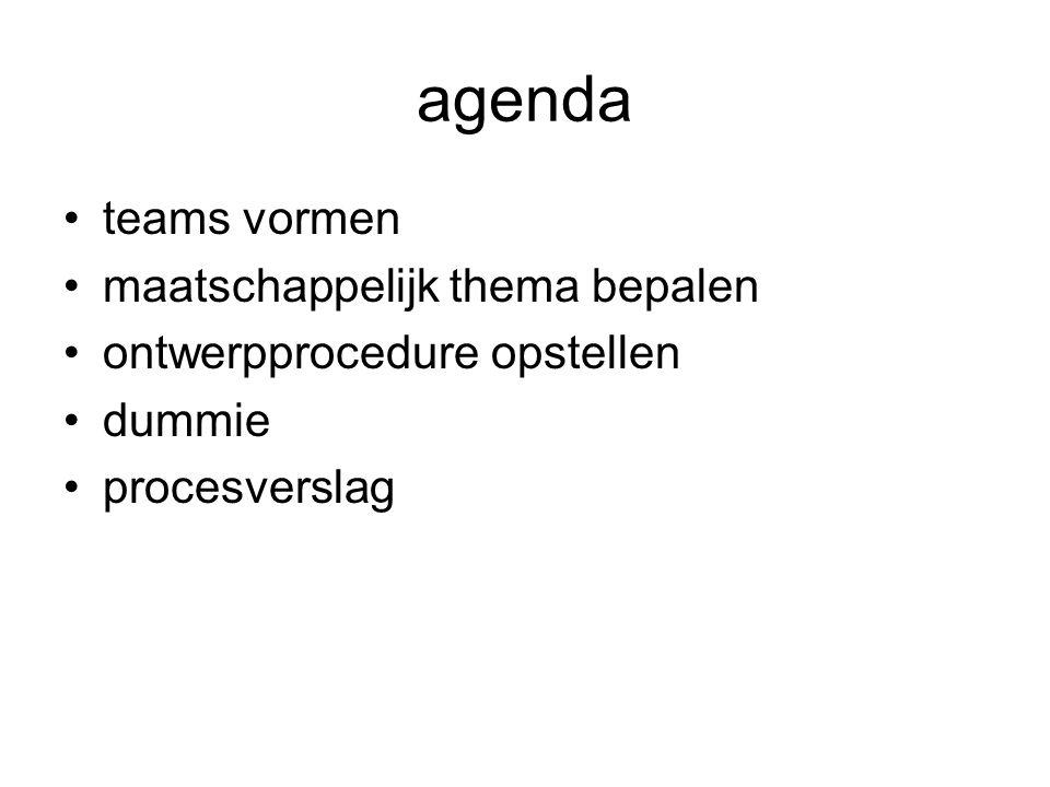 agenda teams vormen maatschappelijk thema bepalen ontwerpprocedure opstellen dummie procesverslag