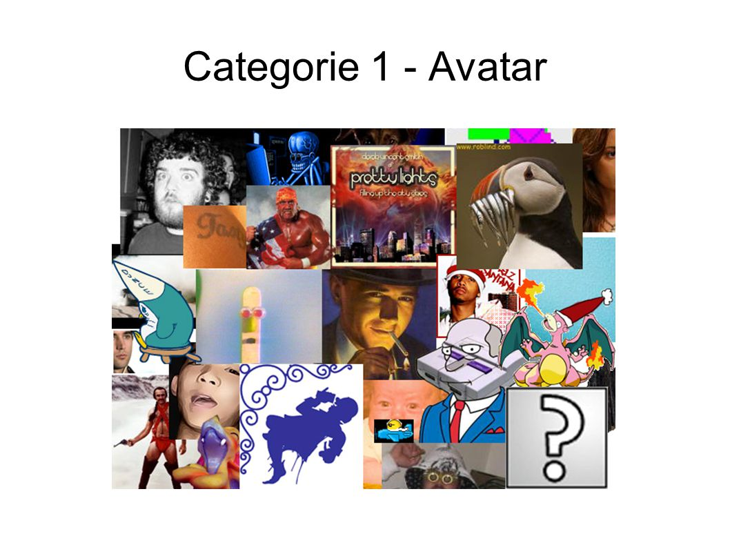 Categorie 1 - Avatar
