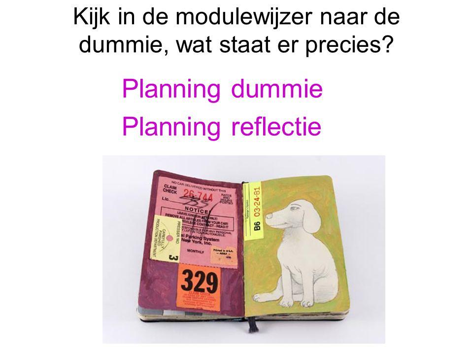 Kijk in de modulewijzer naar de dummie, wat staat er precies? Planning dummie Planning reflectie