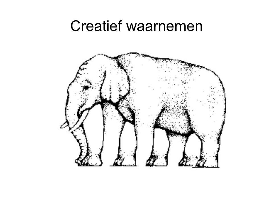 Creatief waarnemen