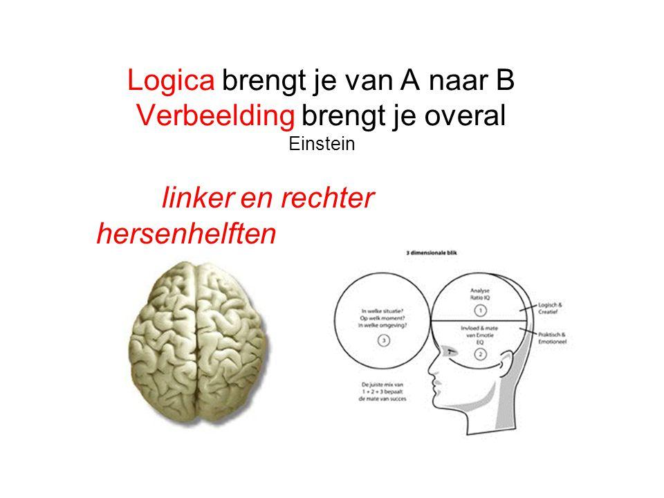 Logica brengt je van A naar B Verbeelding brengt je overal Einstein linker en rechter hersenhelften
