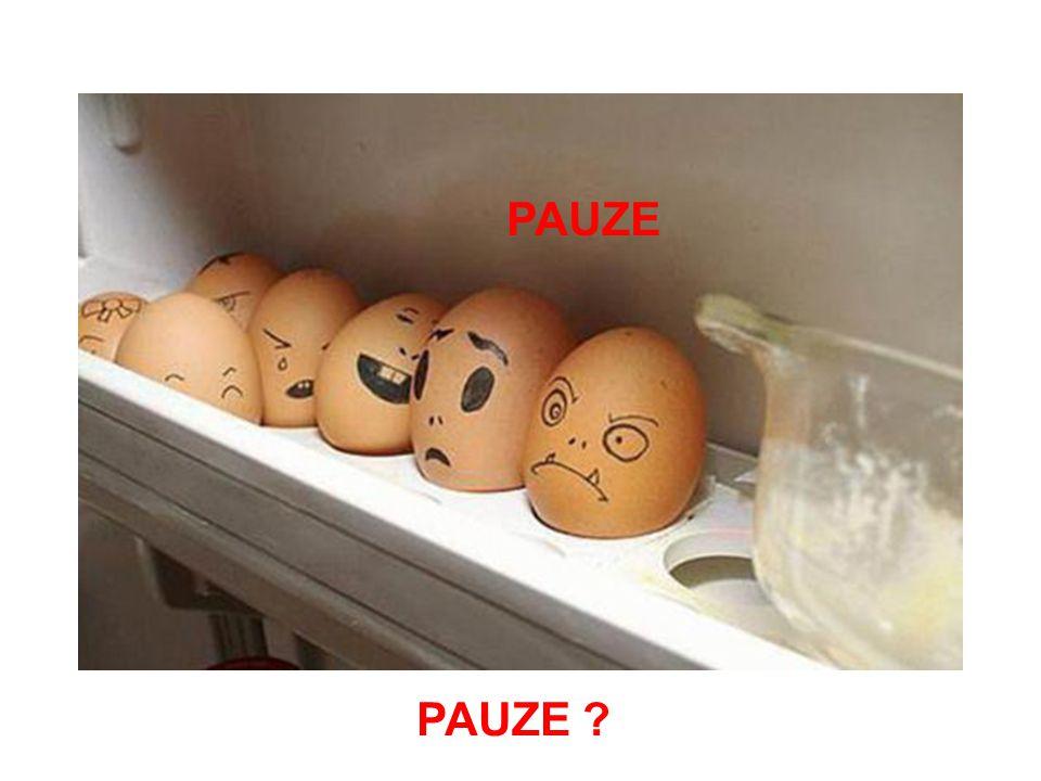 PAUZE PAUZE