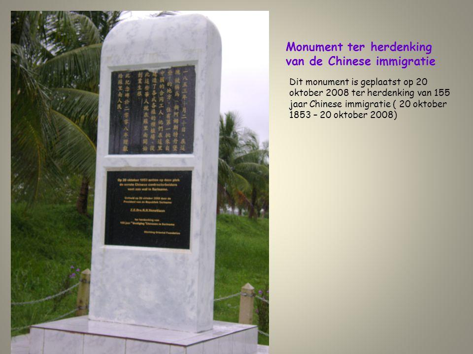 Monument ter herdenking van de Chinese immigratie Dit monument is geplaatst op 20 oktober 2008 ter herdenking van 155 jaar Chinese immigratie ( 20 okt