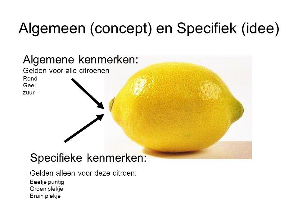 Algemeen (concept) en Specifiek (idee) Specifieke kenmerken: Gelden alleen voor deze citroen: Beetje puntig Groen plekje Bruin plekje Algemene kenmerk
