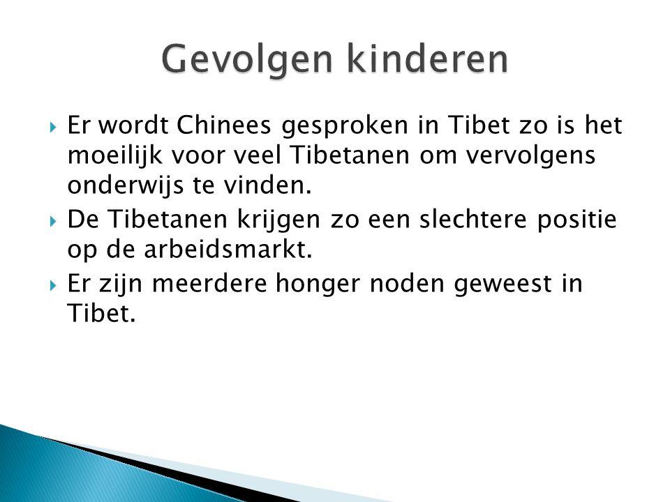  Er wordt Chinees gesproken in Tibet zo is het moeilijk voor veel Tibetanen om vervolgens onderwijs te vinden.  De Tibetanen krijgen zo een slechter