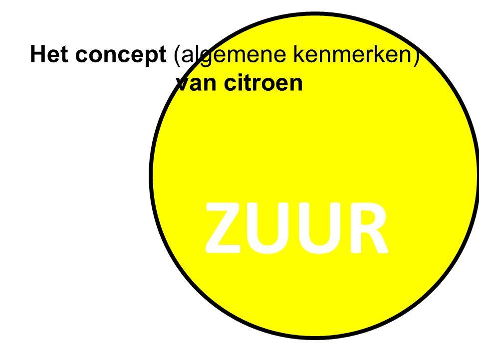 ZUUR Het concept (algemene kenmerken) van citroen