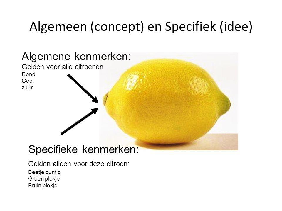 Algemeen (concept) en Specifiek (idee) Specifieke kenmerken: Gelden alleen voor deze citroen: Beetje puntig Groen plekje Bruin plekje Algemene kenmerken: Gelden voor alle citroenen Rond Geel zuur