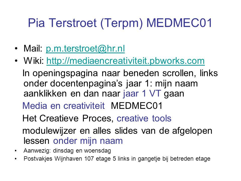 Mail: p.m.terstroet@hr.nlp.m.terstroet@hr.nl Wiki: http://mediaencreativiteit.pbworks.comhttp://mediaencreativiteit.pbworks.com In openingspagina naar