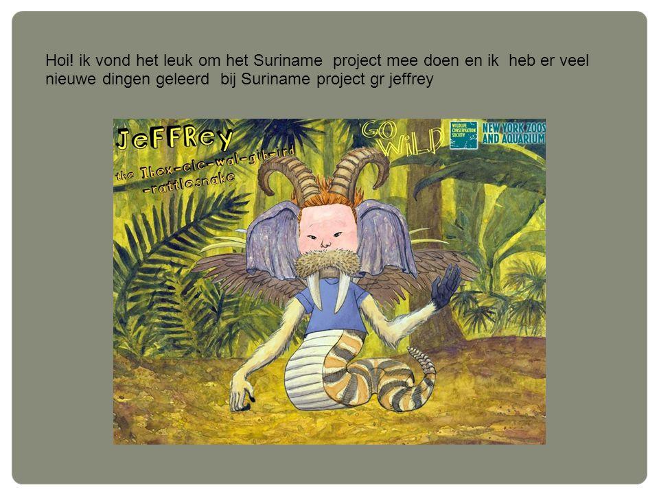 Hoi! ik vond het leuk om het Suriname project mee doen en ik heb er veel nieuwe dingen geleerd bij Suriname project gr jeffrey
