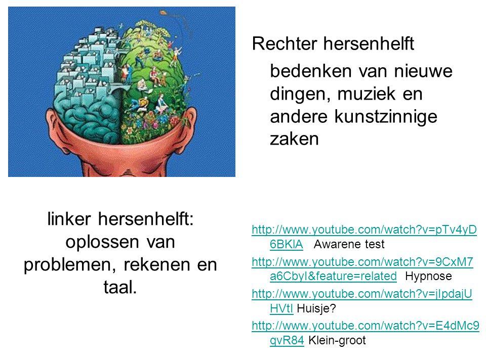 linker hersenhelft: oplossen van problemen, rekenen en taal. Rechter hersenhelft bedenken van nieuwe dingen, muziek en andere kunstzinnige zaken http: