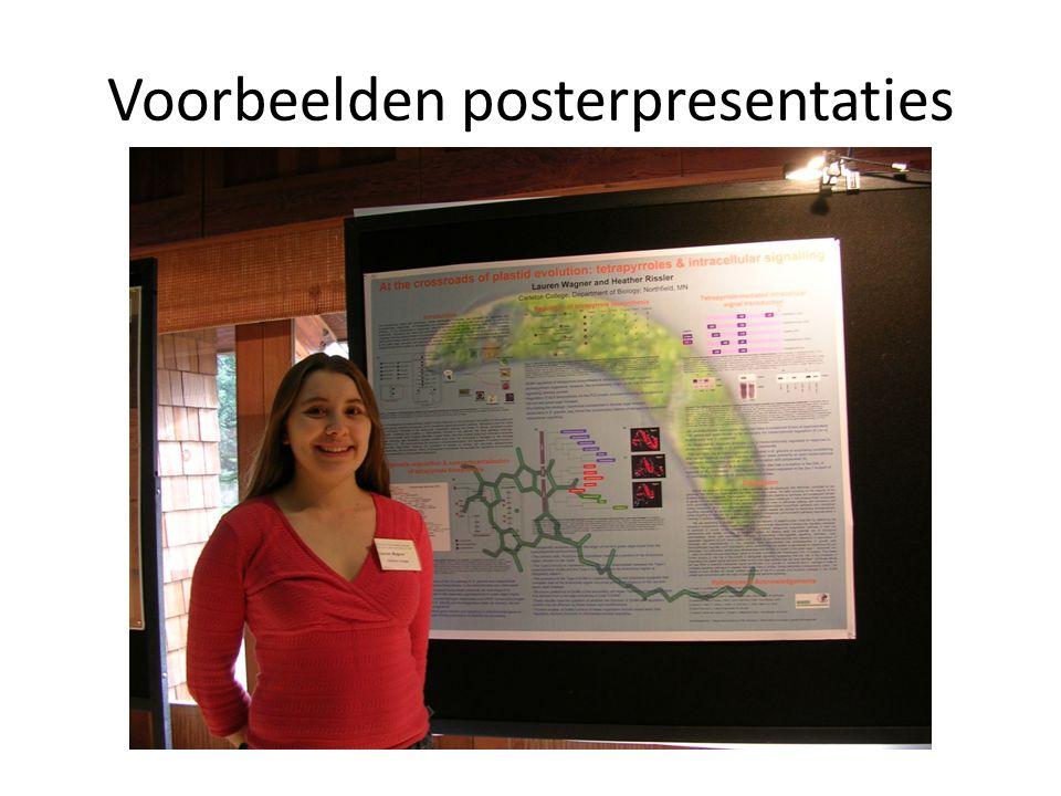 Voorbeelden posterpresentaties