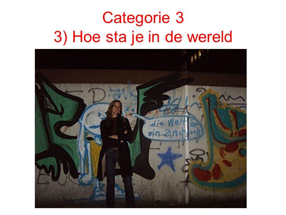 Categorie 3 3) Hoe sta je in de wereld