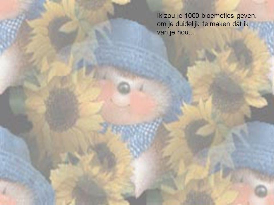 Ik zou je 1000 bloemetjes geven, om je duidelijk te maken dat ik van je hou…