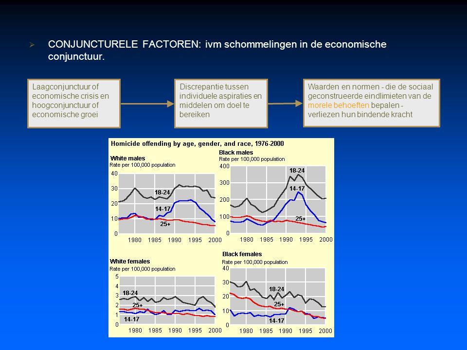 P. Bracke – Academiejaar 2004-2005  CONJUNCTURELE FACTOREN: ivm schommelingen in de economische conjunctuur. Laagconjunctuur of economische crisis en