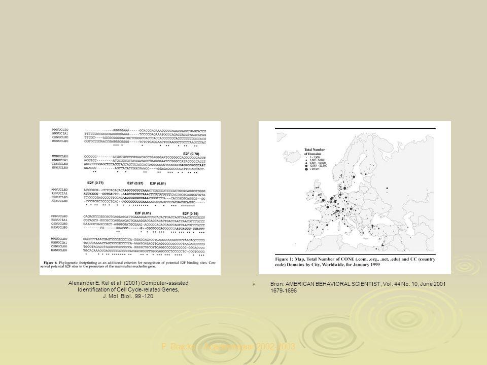 P. Bracke – Academiejaar 2002-2003   Bron: AMERICAN BEHAVIORAL SCIENTIST, Vol. 44 No. 10, June 2001 1679-1696 Alexander E. Kel et al. (2001) Compute
