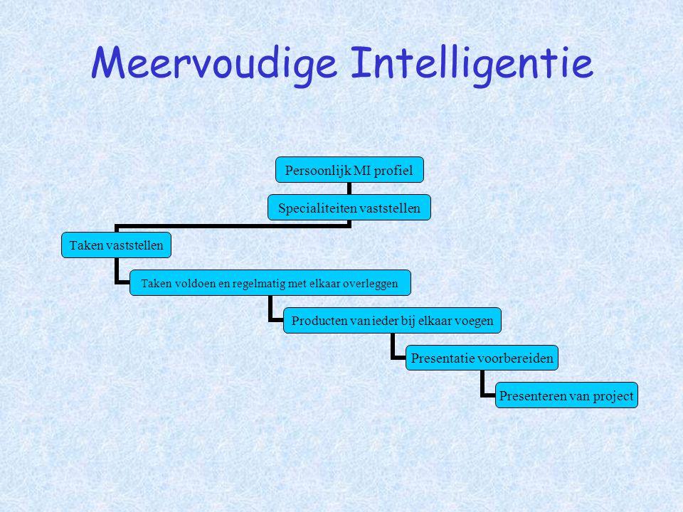 Meervoudige Intelligentie Persoonlijk MI profiel Specialiteiten vaststellen Taken vaststellen Taken voldoen en regelmatig met elkaar overleggen Produc