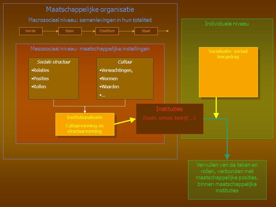 Mesosociaal niveau: maatschappelijke instellingen Vervullen van de taken en rollen, verbonden met maatschappelijke posities, binnen maatschappelijke i