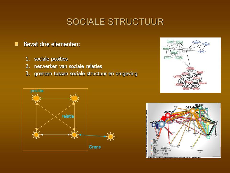 SOCIALE STRUCTUUR Bevat drie elementen: Bevat drie elementen: 1.sociale posities 2.netwerken van sociale relaties 3.grenzen tussen sociale structuur e