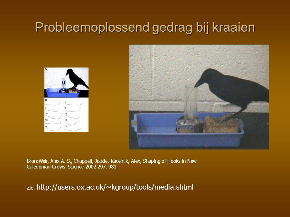 Probleemoplossend gedrag bij kraaien Bron:Weir, Alex A. S., Chappell, Jackie, Kacelnik, Alex, Shaping of Hooks in New Caledonian Crows Science 2002 29