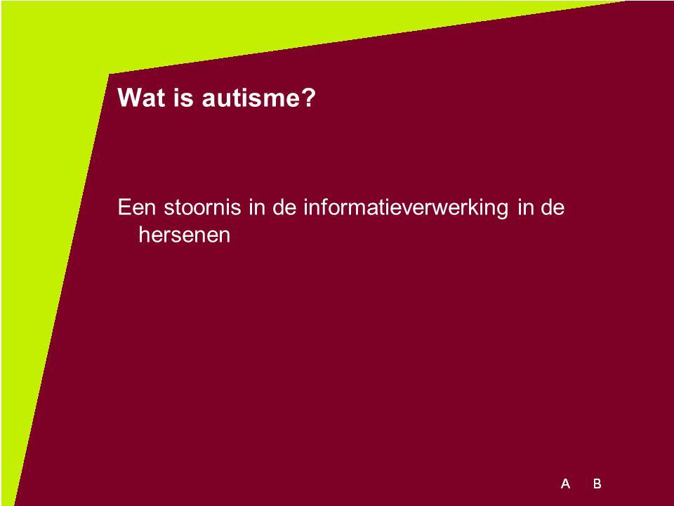 Wat is autisme? Een stoornis in de informatieverwerking in de hersenen