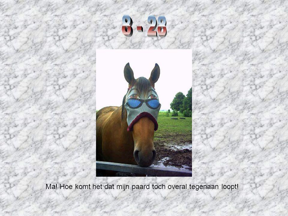 Ma! Hoe komt het dat mijn paard toch overal tegenaan loopt!
