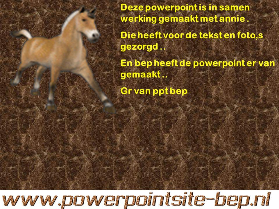 Deze powerpoint is in samen werking gemaakt met annie.