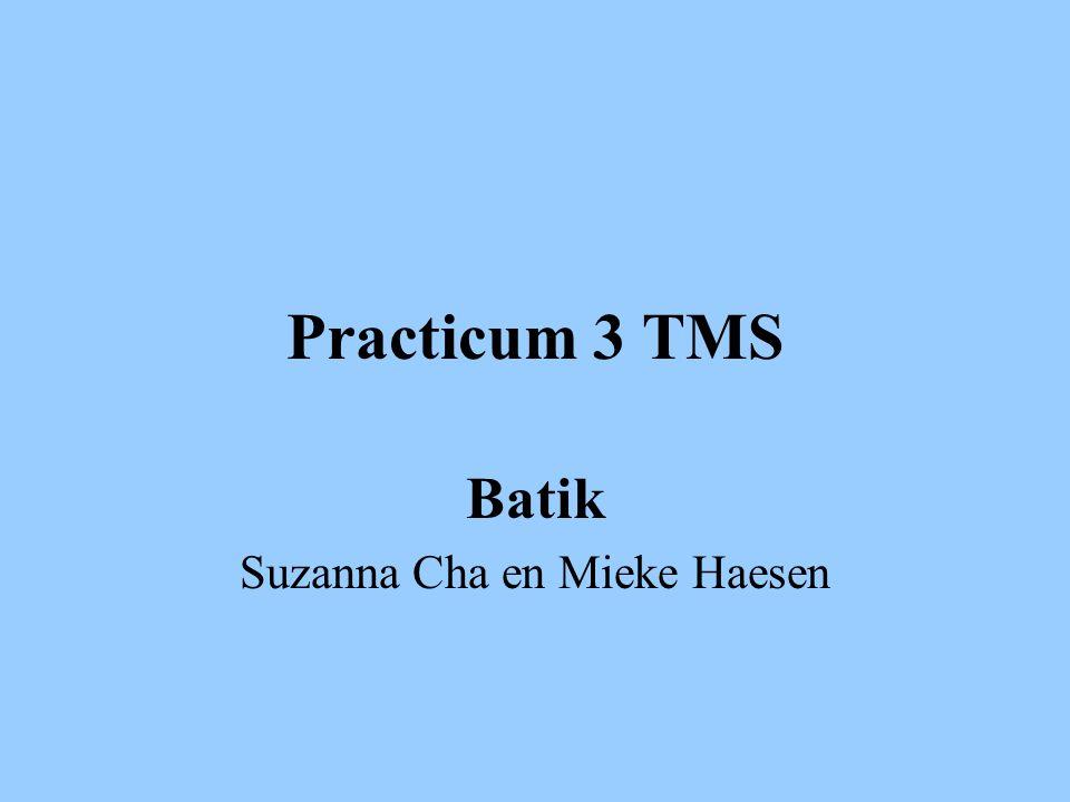 Practicum 3 TMS Batik Suzanna Cha en Mieke Haesen