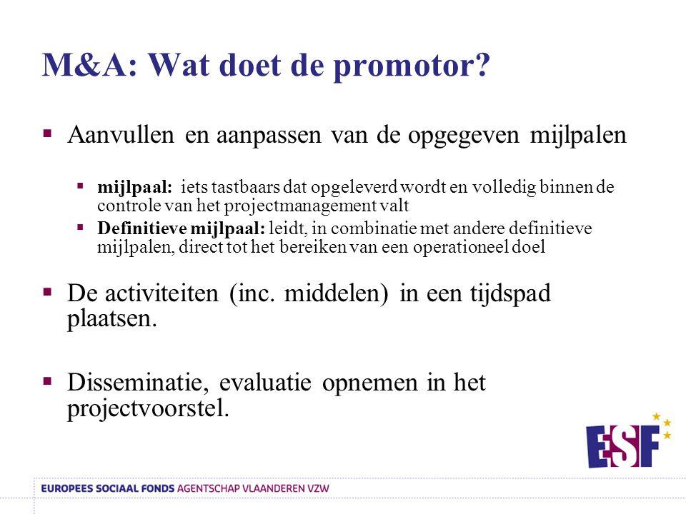 M&A: Wat doet de promotor?  Aanvullen en aanpassen van de opgegeven mijlpalen  mijlpaal: iets tastbaars dat opgeleverd wordt en volledig binnen de c