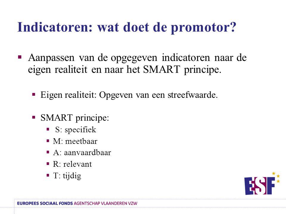 Indicatoren: wat doet de promotor?  Aanpassen van de opgegeven indicatoren naar de eigen realiteit en naar het SMART principe.  Eigen realiteit: Opg