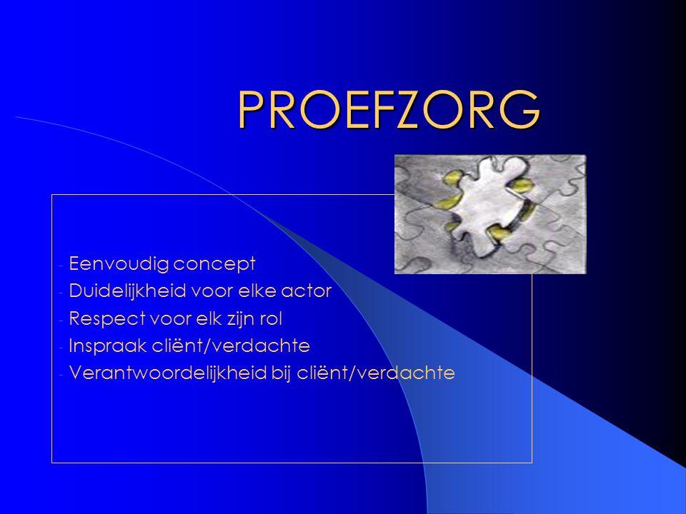 PROEFZORG - Eenvoudig concept - Duidelijkheid voor elke actor - Respect voor elk zijn rol - Inspraak cliënt/verdachte - Verantwoordelijkheid bij cliën