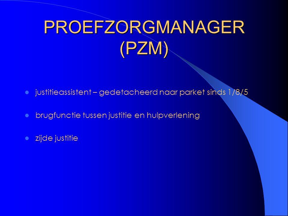 PROEFZORGMANAGER (PZM) justitieassistent – gedetacheerd naar parket sinds 1/8/5 brugfunctie tussen justitie en hulpverlening zijde justitie