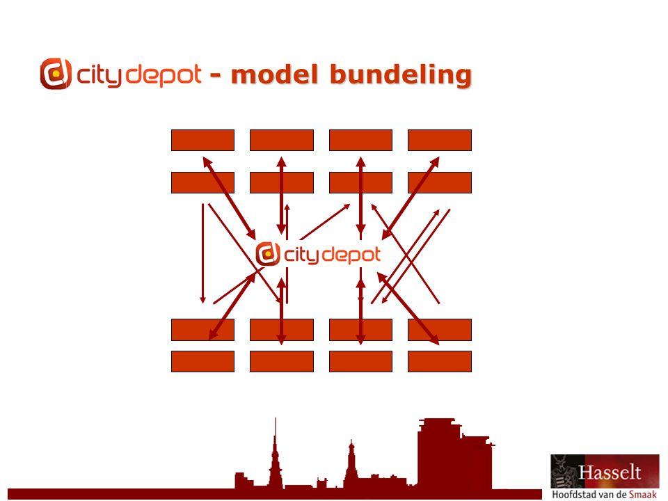 © 2011 Stad Hasselt CityDepot - model bundeling