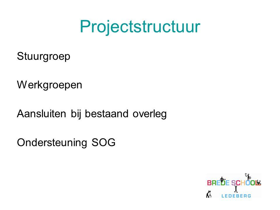 Projectstructuur Stuurgroep Werkgroepen Aansluiten bij bestaand overleg Ondersteuning SOG