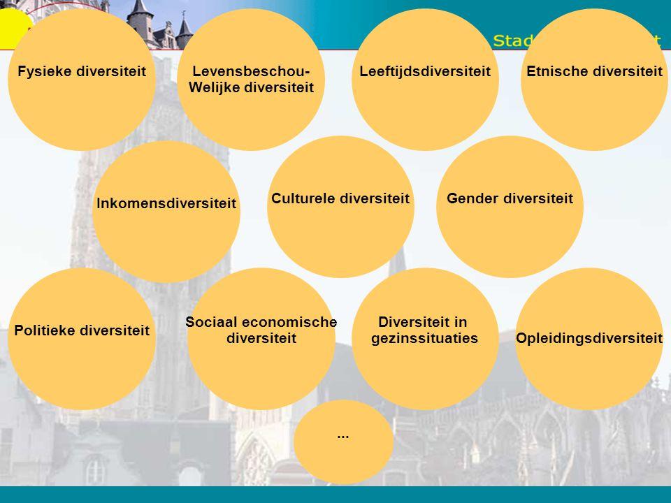 Al deze processen, hoe ongrijpbaar ook, hebben een impact op het gedrag van de Mechelaar, op het samenleven in de stad. Ook op de werking van de stad.