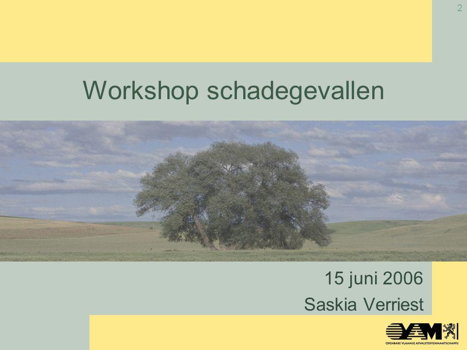 2 Workshop schadegevallen 15 juni 2006 Saskia Verriest