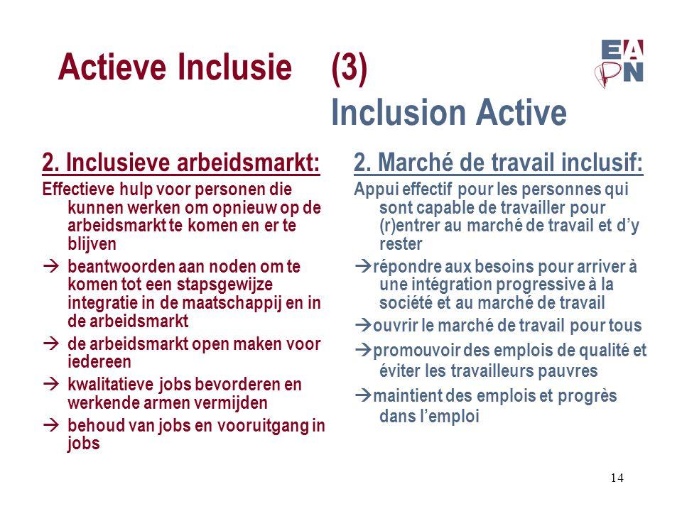 Actieve Inclusie(3) Inclusion Active 2.