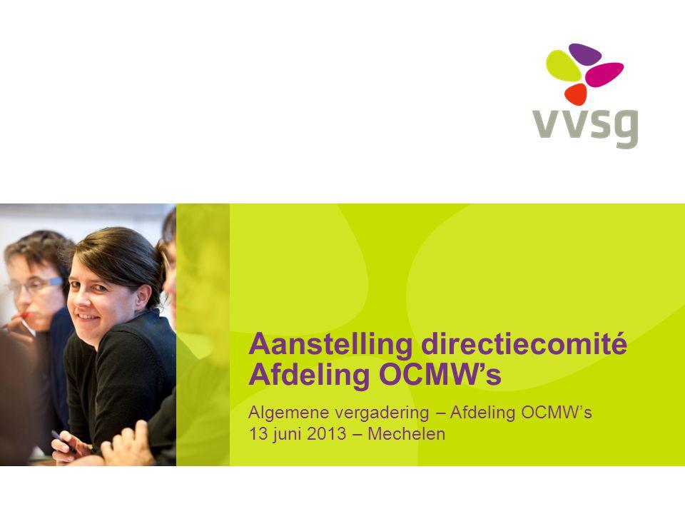 Aanstelling directiecomité Afdeling OCMW's Algemene vergadering – Afdeling OCMW's 13 juni 2013 – Mechelen