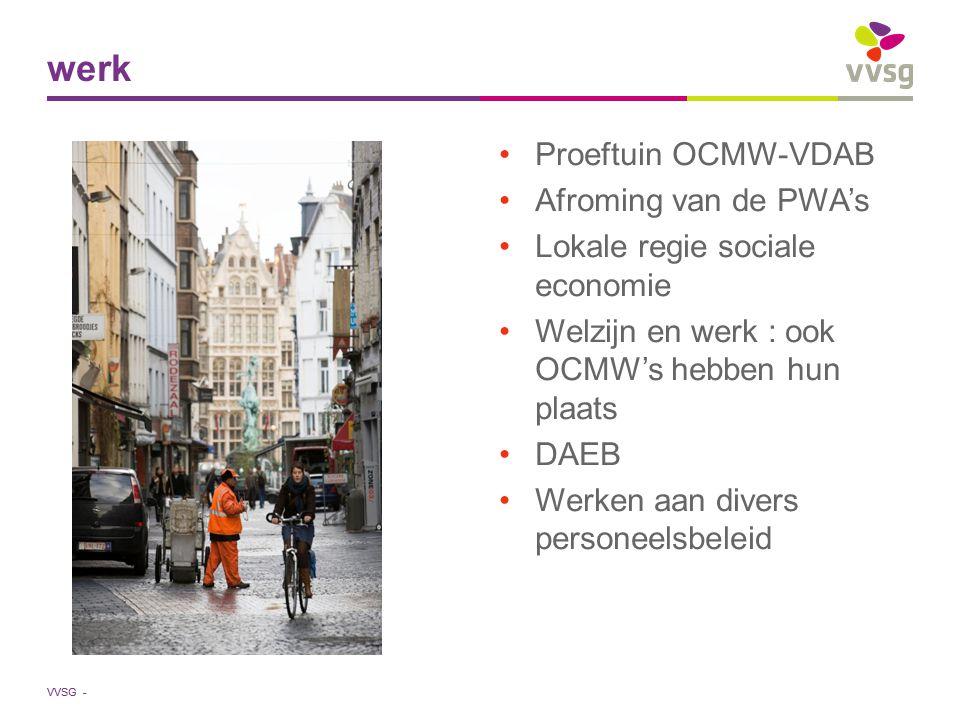 VVSG - Proeftuin OCMW-VDAB Afroming van de PWA's Lokale regie sociale economie Welzijn en werk : ook OCMW's hebben hun plaats DAEB Werken aan divers personeelsbeleid werk