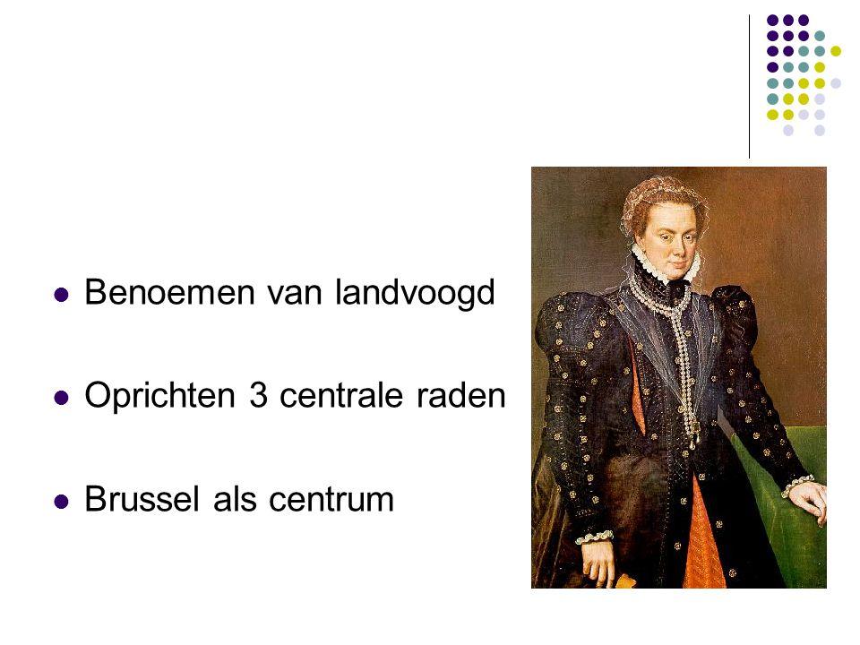 Benoemen van landvoogd Oprichten 3 centrale raden Brussel als centrum